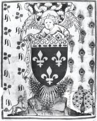 Cosses de genêt et branches de genêt fleuries. Folio d'introduction de l'Armorial de la Cour Amoureuse.Vienne, Archives d'Etat, Toison d'Or, ms. 51, f°2v°, vers 1409-1410.